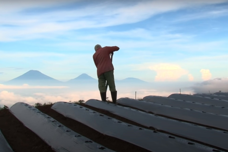 Award-winning documentary 'The Land Beneath the Fog' available on YouTube
