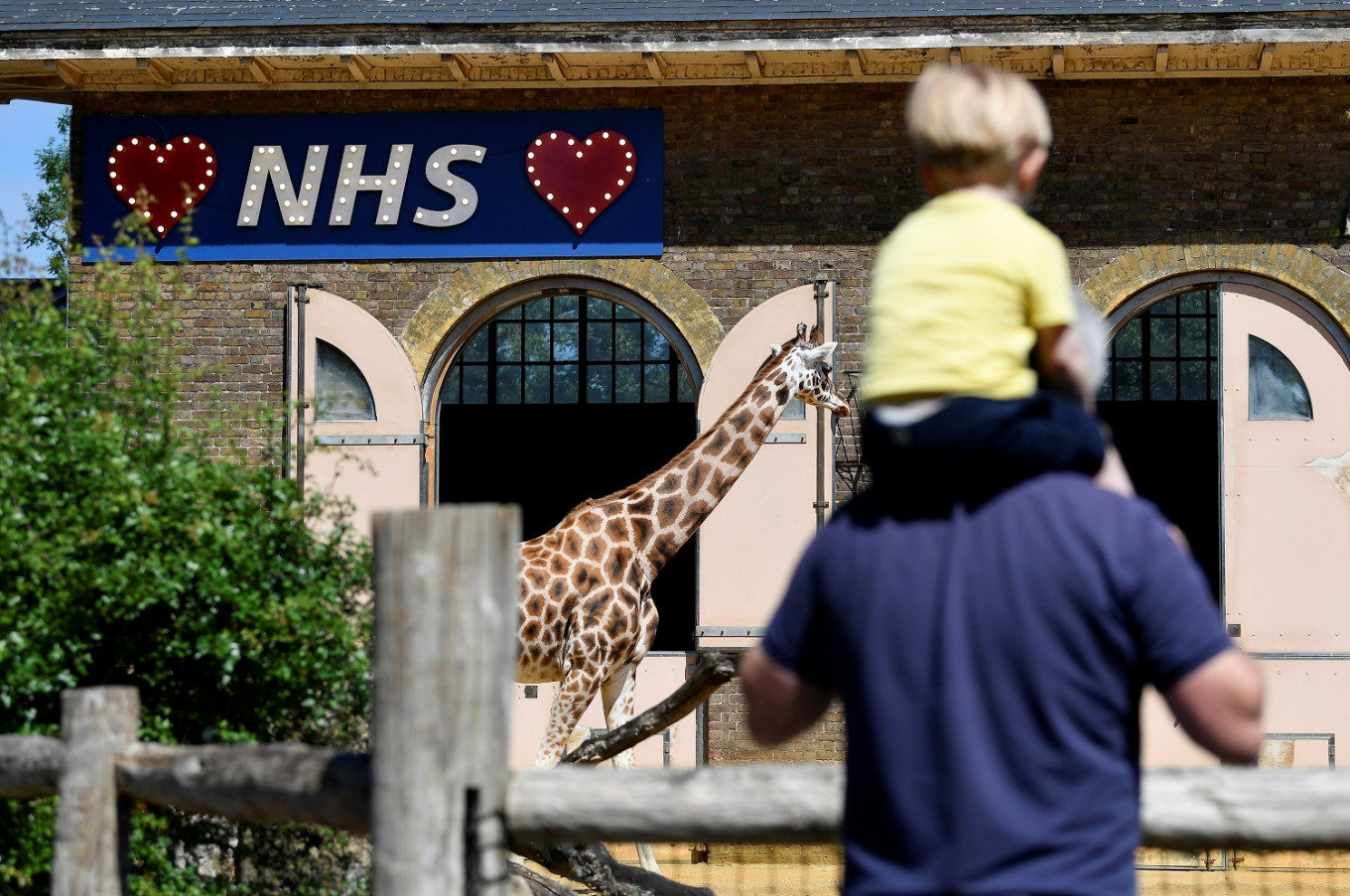 London Zoo reopens after lockdown, but with limits in place