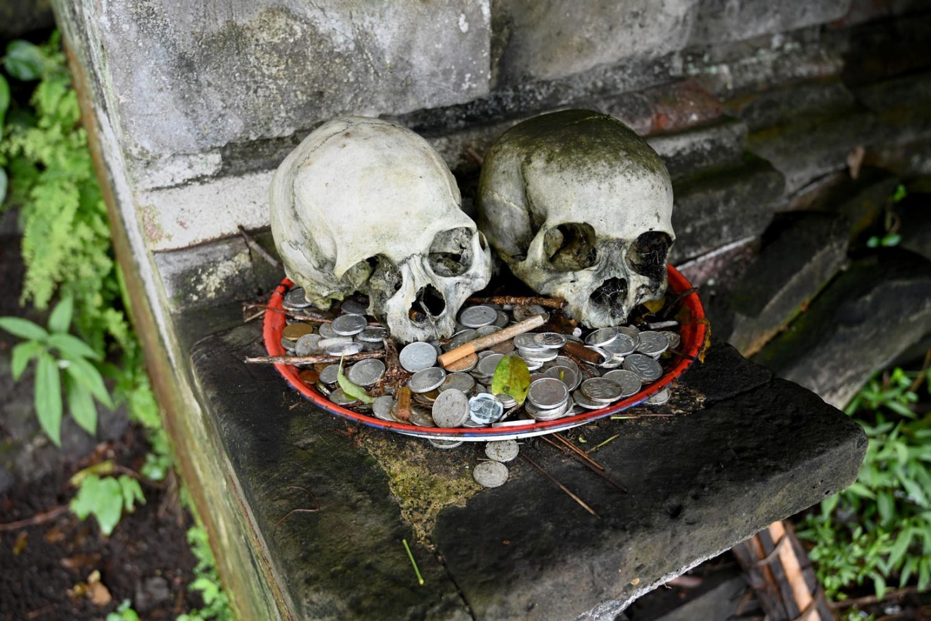 This picture taken on February 20, 2020 shows skulls on display with offerings at a cemetery where Bali's Trunyanese people hold open-air burials - before restrictions were implemented due to the COVID-19 coronavirus - near the village of Trunyan in Bangli Regency, near Lake Batur on Bali island. - For centuries Bali's Trunyanese people have left their dead to decompose in the open air, the bodies placed in bamboo cages until only the skeletons remain -- a ritual they haven't given up -- even as the COVID-19 pandemic upends burial practices worldwide. AFP/Sonny Tumbelaka