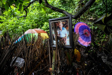 This picture taken on February 20, 2020 shows a photo of one of the deceased next to bamboo cages which cover bodies at a cemetery where Bali's Trunyanese people hold open-air burials - before restrictions were implemented due to the COVID-19 coronavirus - near the village of Trunyan in Bangli Regency, near Lake Batur on Bali island. - For centuries Bali's Trunyanese people have left their dead to decompose in the open air, the bodies placed in bamboo cages until only the skeletons remain -- a ritual they haven't given up -- even as the COVID-19 pandemic upends burial practices worldwide.  AFP/Sonny Tumbelaka