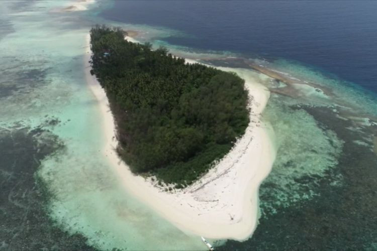 West Sulawesi turtle conservation island allegedly sold for Rp 2 billion