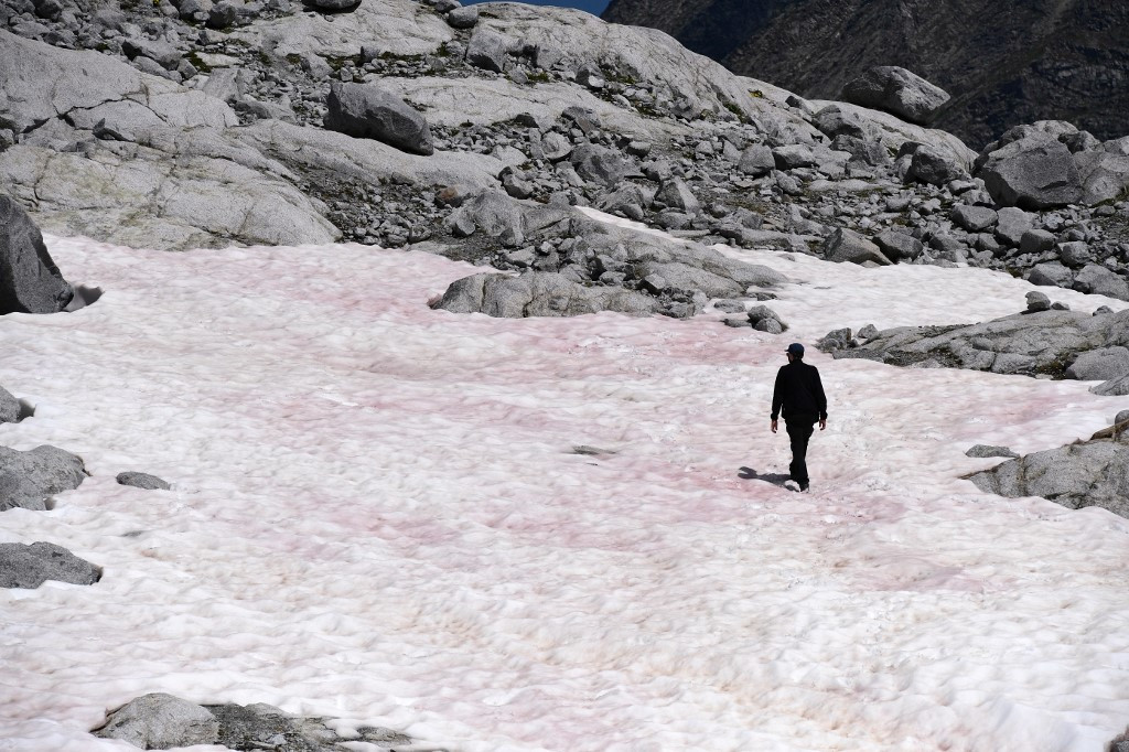 Italian scientists investigate pink glacial ice in the Alps