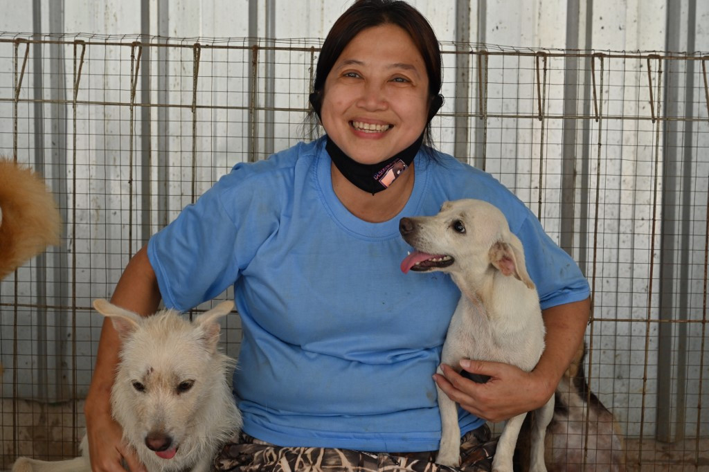 Indonesia 'dog doctor' rescues canines from pandemic peril