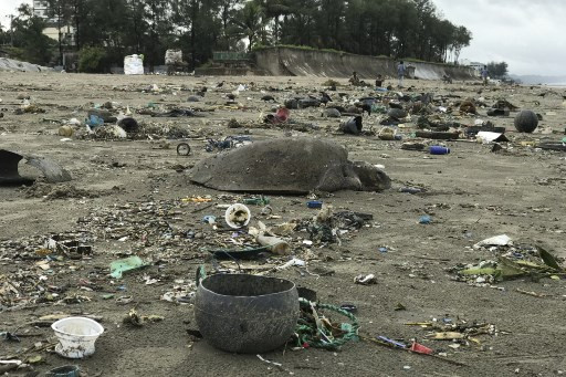 Race to rescue turtles entangled in plastic on Bangladesh beach