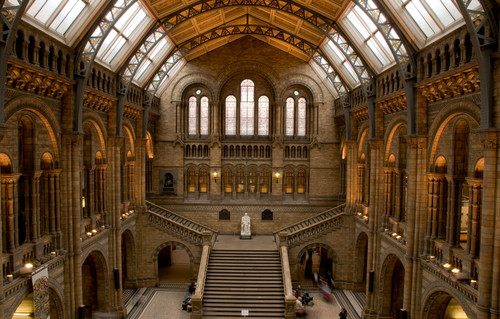 Dusting off the past: London's Natural History Museum prepares to re-open
