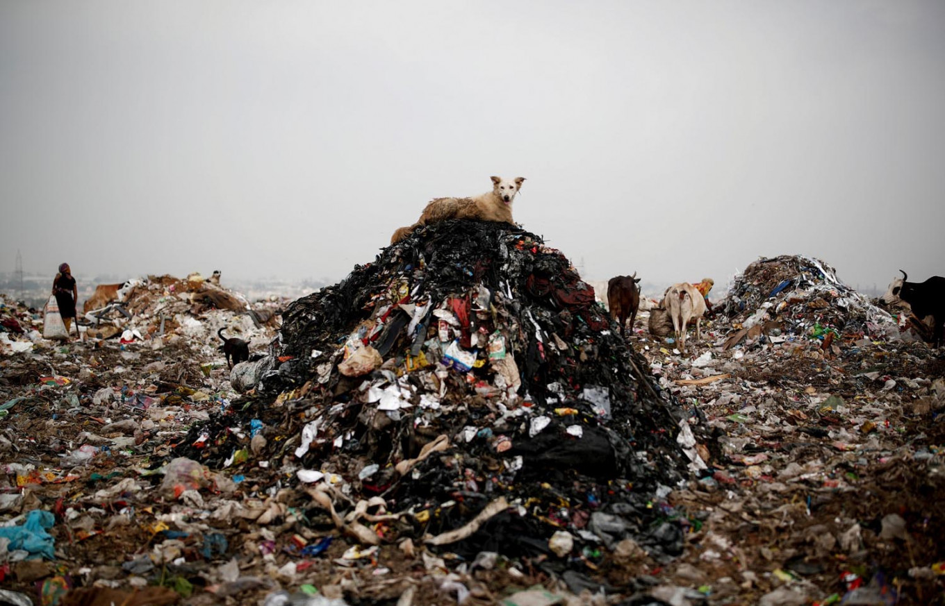 A dog rests on a pile of rubbish at a landfill site, during the coronavirus disease (COVID-19) outbreak, in New Delhi, India, July 15, 2020. Reuters/Adnan Abidi
