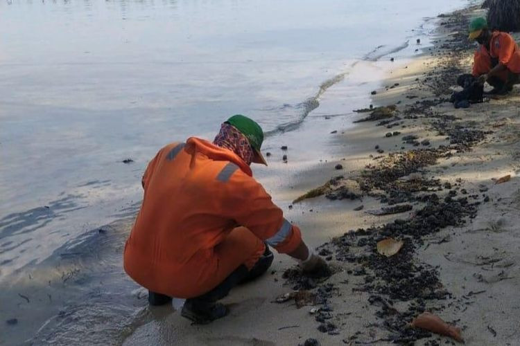 Crude oil suspected to be from Pertamina operation contaminates Thousand Islands... again