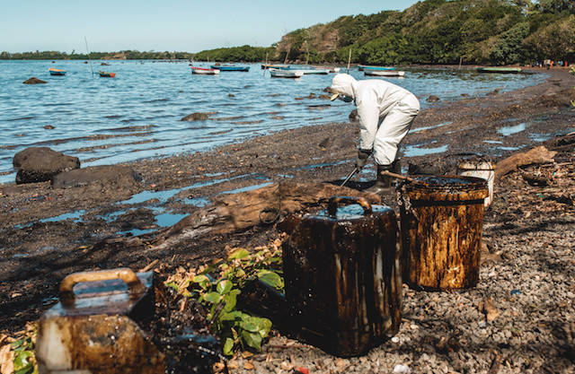 'Massive poisonous shock': Scientists fear lasting impact from Mauritius oil spill
