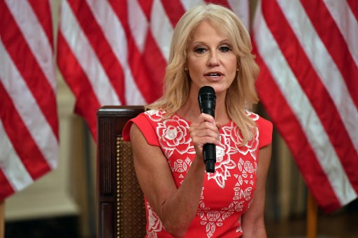 Trump's media pugilist Kellyanne Conway steps down