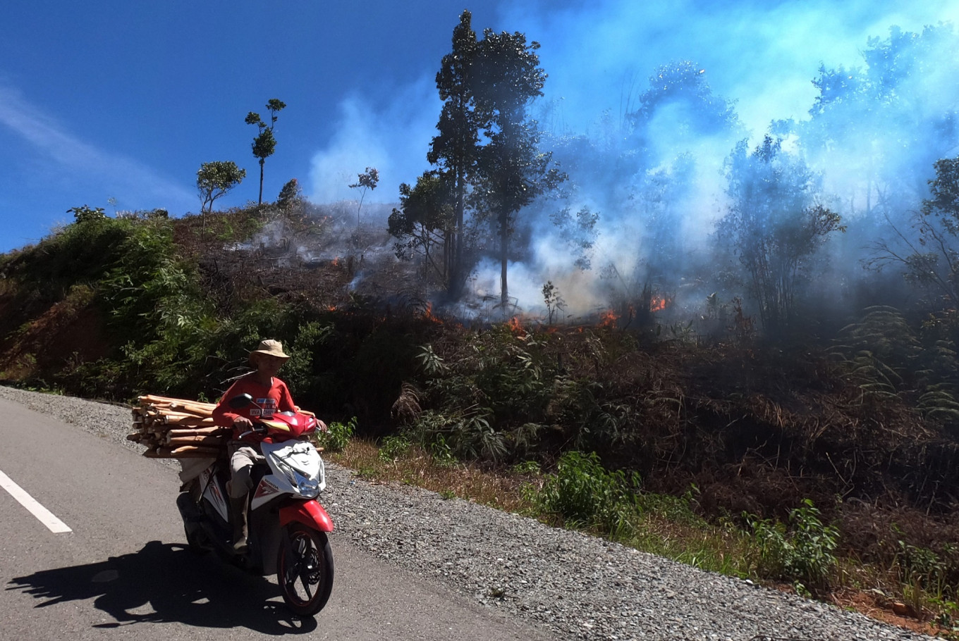 Six Indonesian provinces declare alert status for forest and land fires