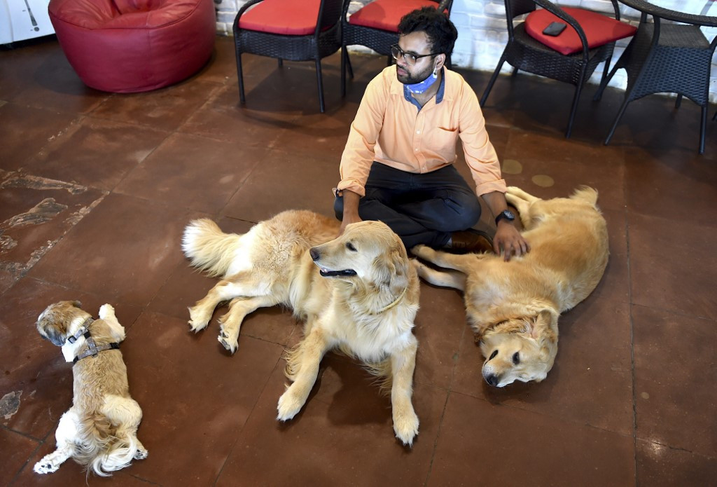 Dogged by lockdown loneliness, Indians adopt man's best friend
