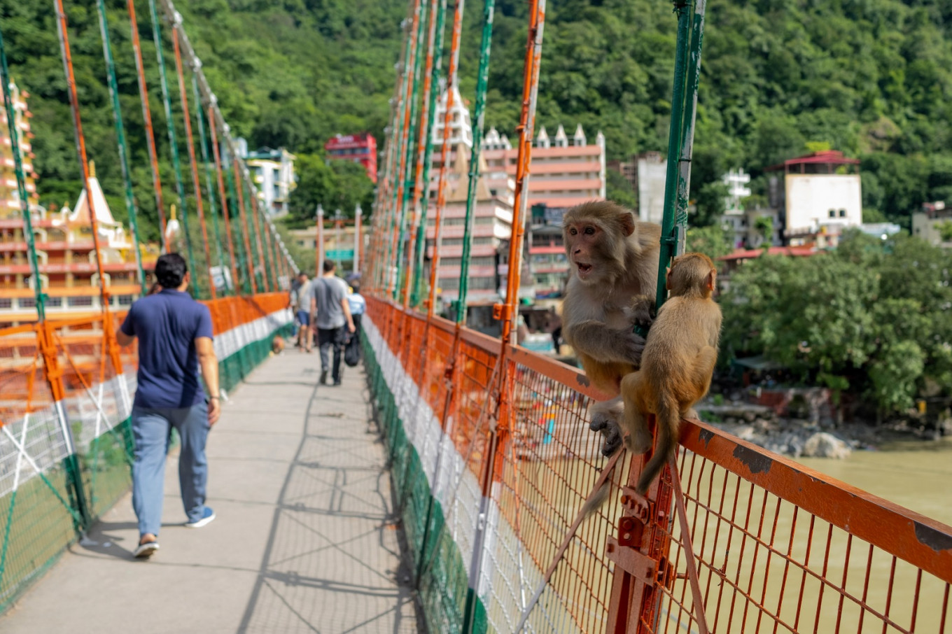 French woman apologizes for India holy bridge video, denies being naked