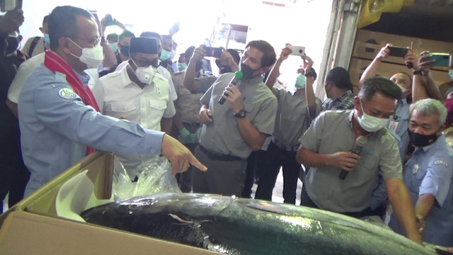 Indonesia exports 2.2 tons of tuna from Maluku to Japan