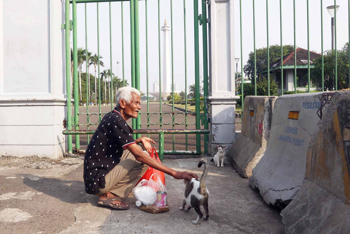 Pendi, 72, feeds stray cats outside the National Monument (Monas) complex in Central Jakarta, on September. 2. 2020 Every week, Pendi receives Rp 70,000 (US$4.74) from a donor to buy cat food and feed around 150 stray cats in the area. JP/Dhoni Setiawan