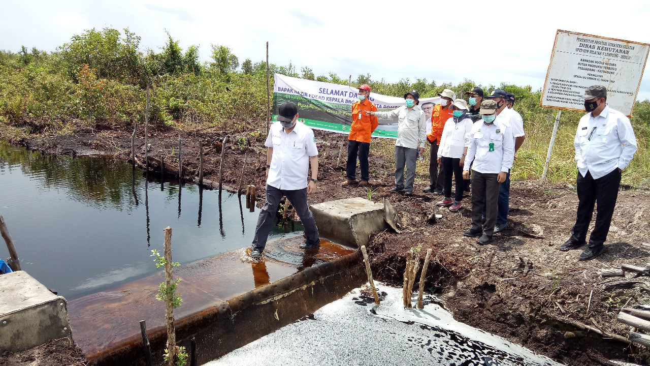 BRG tests concrete canal dams in peatland rewetting efforts