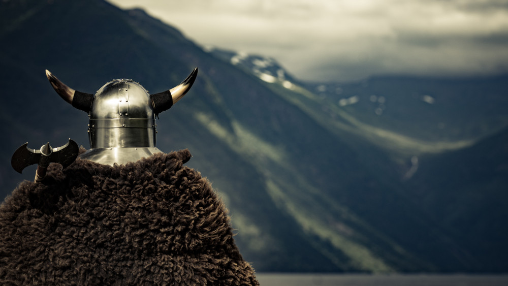 Vikings not as blond and blue-eyed as previously thought: Study