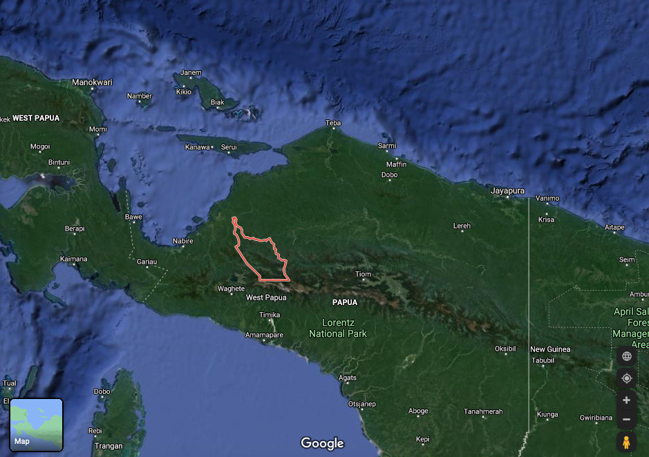 Papuan armed group opens fire on fact-finding team in Intan Jaya