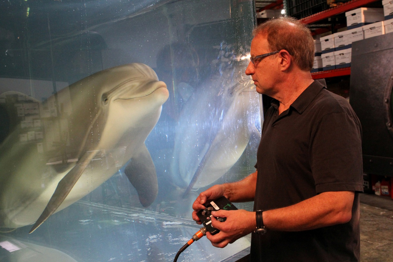 The robot dolphin that could replace captive animals at theme parks one day