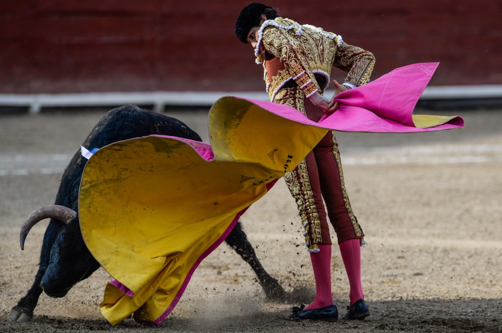 Pandemic halts bullfighting where animal rights activists couldn't