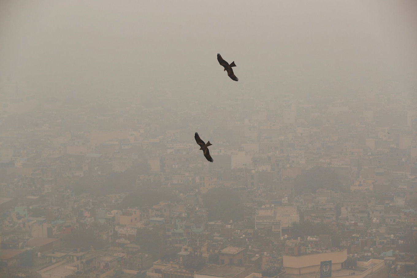 India's capital New Delhi suffers most toxic air in a year