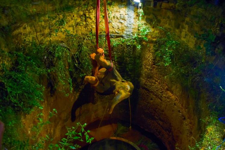 Jumbo task: Elephant hoisted from deep well in India