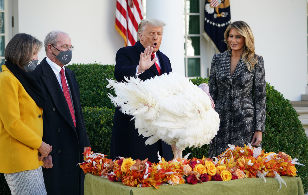 Lame duck Trump pardons turkey but dodges elephant in room