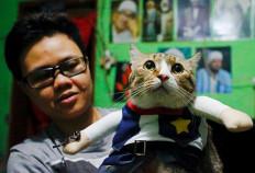 Risma Sandra Irawan, 31, carries her cat wearing a cosplay costume, in Jakarta, Indonesia, November 29, 2020. Reuters/Ajeng Dinar Ulfiana