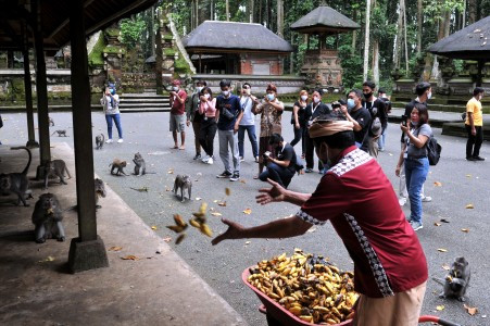 Bali tourism on rise