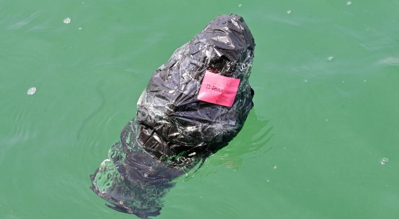 Indonesia tracks marine litter through satellite