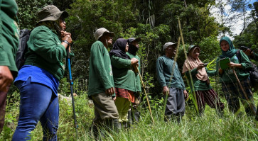 Indonesia's female forest guardians fight for the environment
