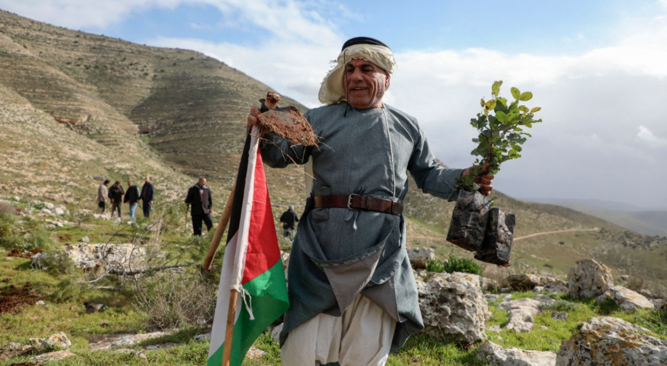 Palestinians replant trees after Israel uproots thousands