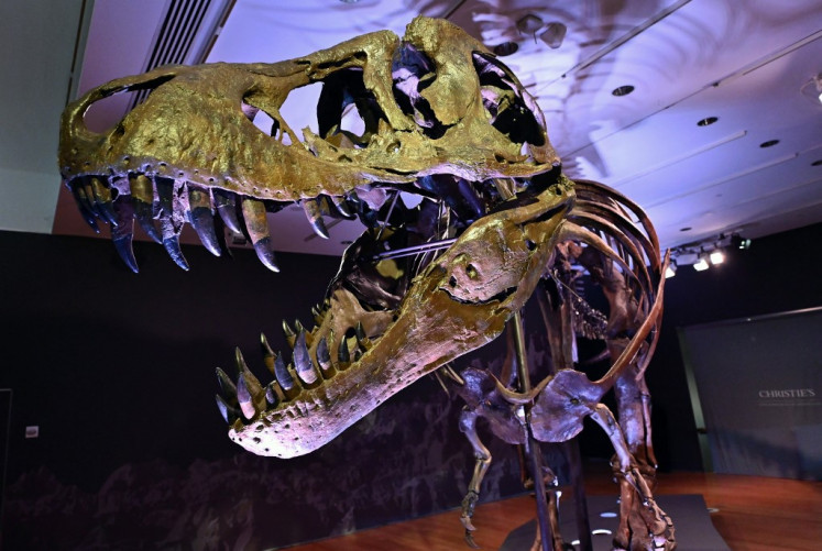 Teenage T-Rexes edged out smaller dinosaur species, says study