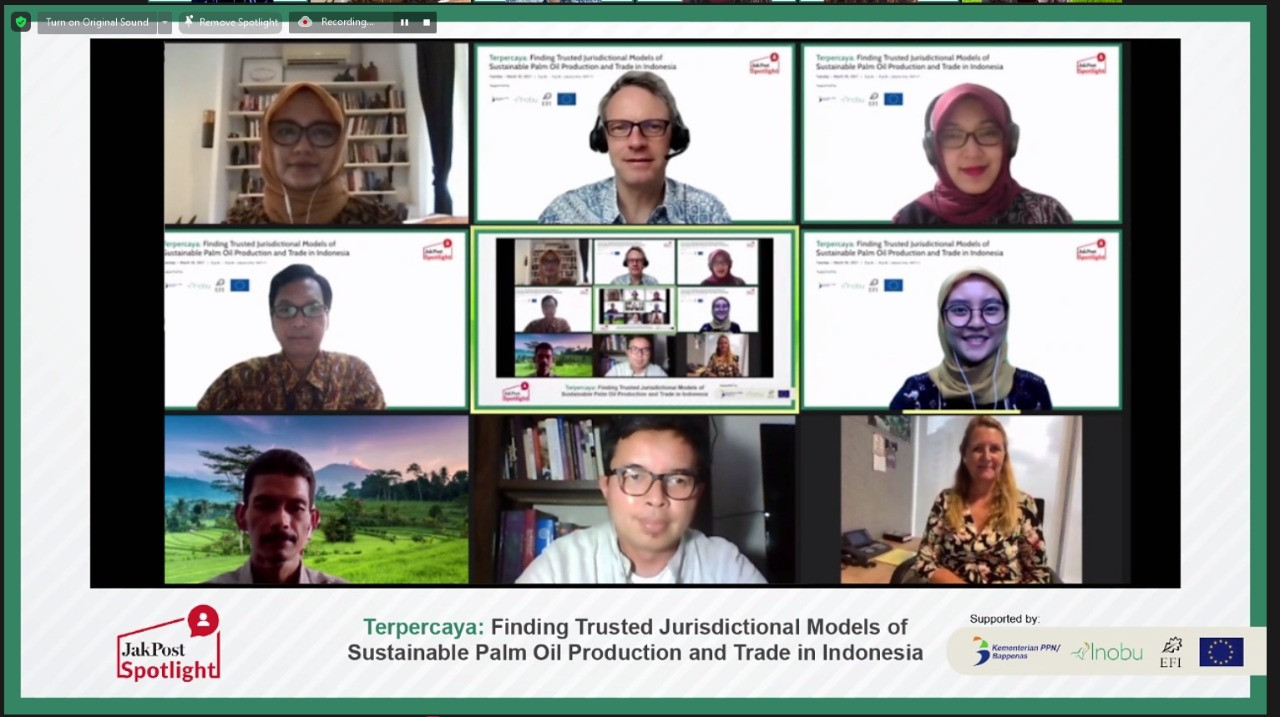Sustainable palm: the future of Indonesian palm oil production and trade