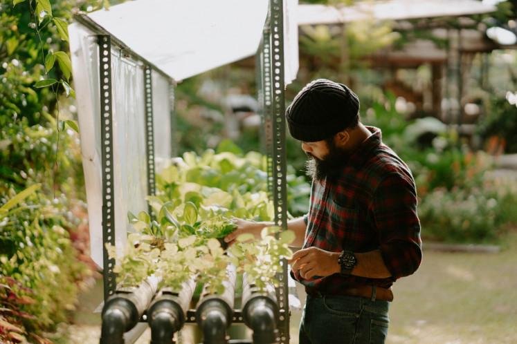 Green life: Gianjar tends to seedlings.